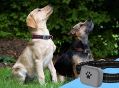 A21P waterproof pet mini tracker
